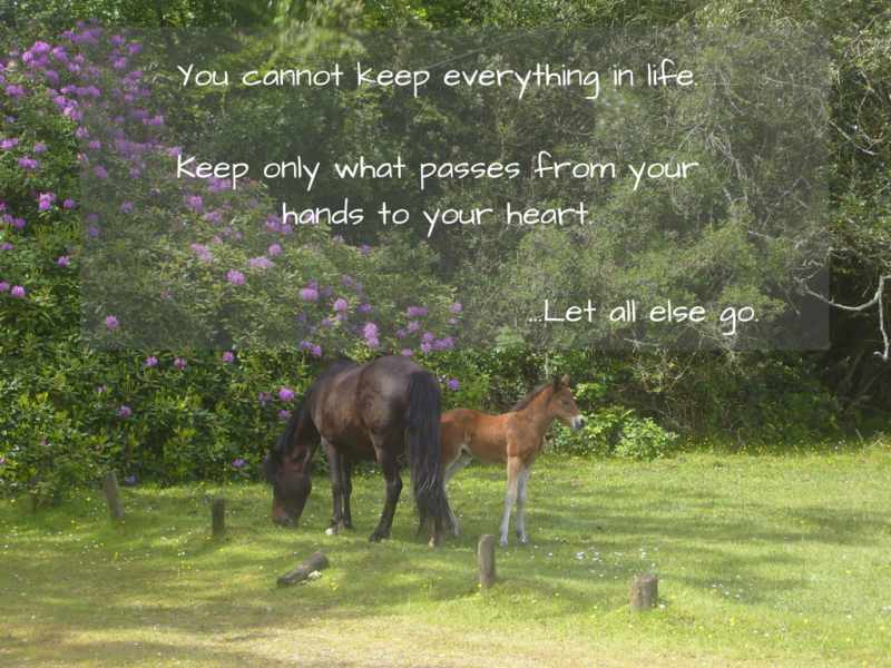 You cannot keep everything in life. Keep only what passes from your hands to your heart. Let all else go